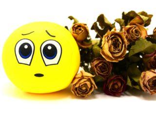 Emotional Expression